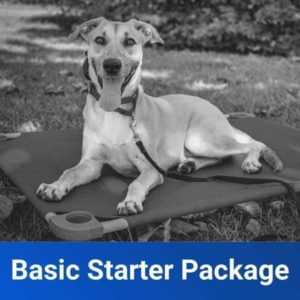 basic obedience starter